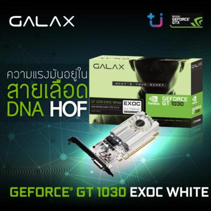 GALAX GeForce GT 1030 EXOC White ที่ได้รับการถ่ายทอดสายเลือด DNA จาก HOF
